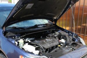 Saber dueño de auto por nombre y rut